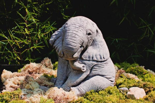 Sitzender Baby-Elefant