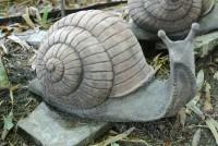 Weinbergschnecke aus Stein
