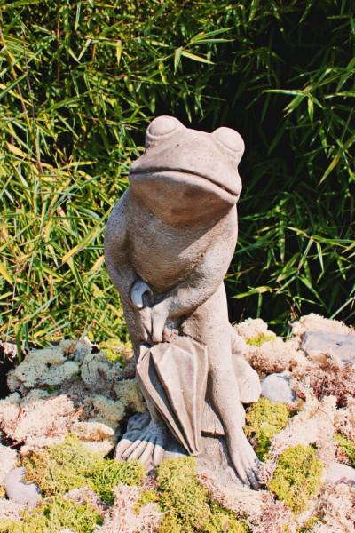 Frosch mit Regenschirm