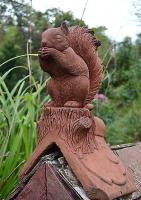 Eichhörnchen - Dachreiter