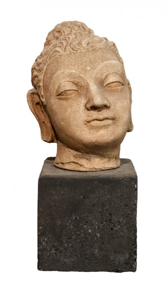 Buddhakopf Gandhara
