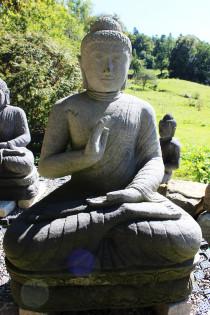 Buddha mit Dharmachakra Mudra auf Lotusblume