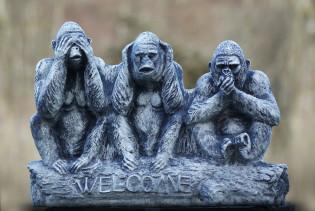 Drei Affen Welcome