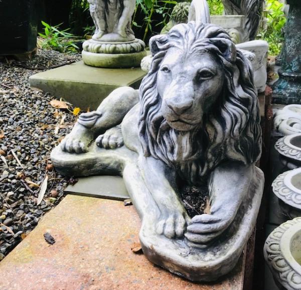 Bewachender liegender Löwe