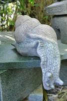 Weinbergschnecke aus Stein herunterkriechend