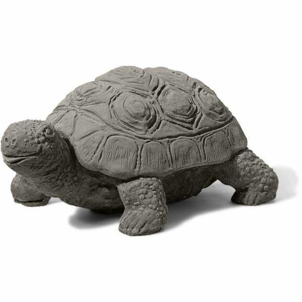 Emma die Schildkröte